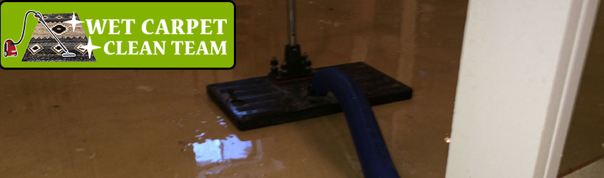 Carpet Water Extraction Logan City