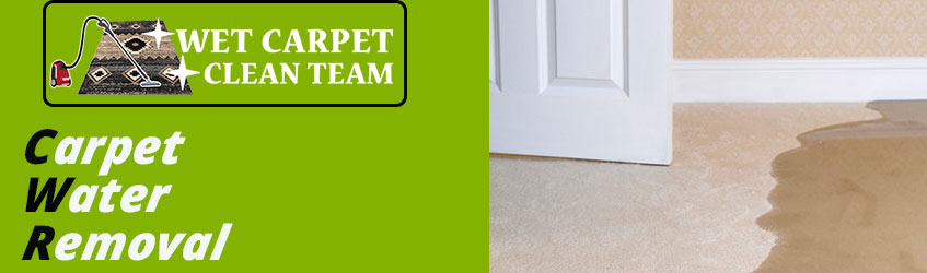 Carpet Water Removal Logan City