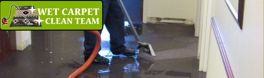 Expert Carpet Water Damage Flood Restoration Logan City